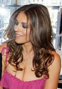 Image detail for -blonde highlights with dark hair ...