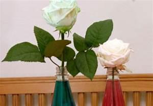 Experiment Fr Kinder Experimente Mit Wasser Blumen