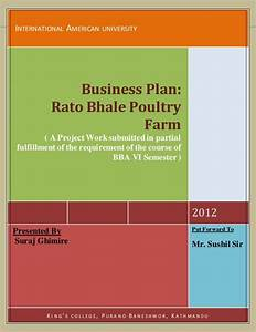Business Plan Poultry Industry