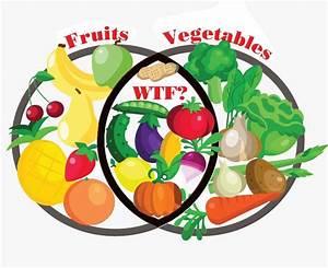 Venn Diagram  Fruit Or Vegetable