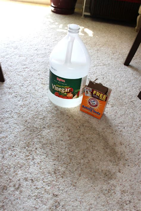 The best way to get stains out of the carpet is by a mixture of 2 tablespoons salt dissolved in 1/2 cup white vinegar and rub it with light carpet stains. Between3Sisters | Cleaning Queen Tip #2: Cleaning Stains From White Carpets