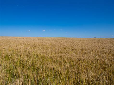 Saskatchewan Farm Land - Luxury Real Estate Auctions