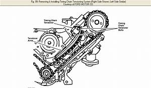Service Manual  I Need Torque Specs And Timing Chain