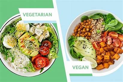 Vegan Difference Vegetarian Between Diets Eco