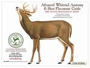 Advanced Whitetail Anatomy And Shot Placement Guide  W