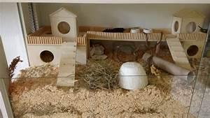 Holzhaus Für Kleintiere : hamster eigenbau nagarium einrichtung dreikammer haus und ~ Lizthompson.info Haus und Dekorationen