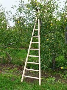 Echelle En Bois Déco : echelles simples d 39 appui comparez les prix pour ~ Dailycaller-alerts.com Idées de Décoration