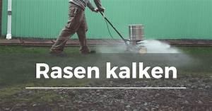 Was Hilft Gegen Klee Im Rasen : rasen kalken garten schule ~ Watch28wear.com Haus und Dekorationen