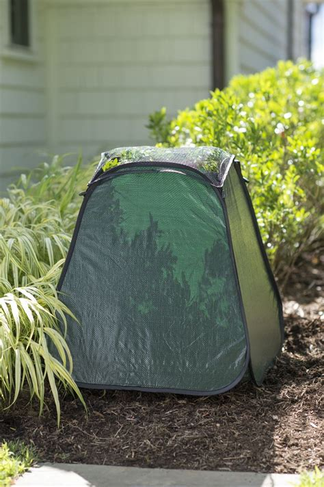 plant protection   winter pop  plant protector