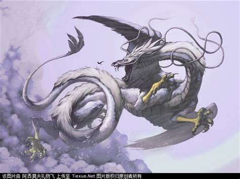 66 Best Dragons Images On Pinterest