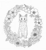 Coloring Whisker Haven Pages Nature Adult Pg Harmony Sheets Adults Printables Children sketch template