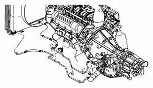 2005 Dodge Dakota Used For  Tube And Hose  Oil Cooler