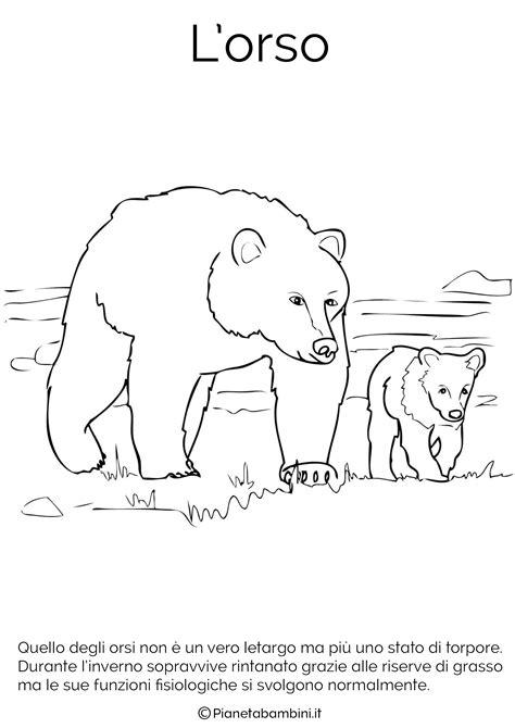 disegni da colorare disegni di animali che vanno in letargo da colorare