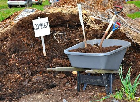 Too Much Compost-is It Poisoning Your Garden?-garden Myths