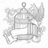 Coloring Bird Cage Elegant Flying Illustration Pages Printable Sheets Getcolorings Exquisite sketch template