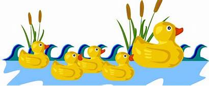 Clipart Duck Clip Transparent Pond Swimming Dog