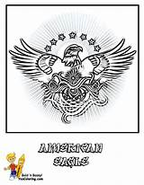 Coloring Eagle Army American Pages Printables Military Boys Yescoloring Soldier Brawny sketch template