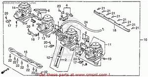 Honda Nighthawk 650 Wiring Diagram
