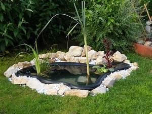 pompage pourquoi pas un bassin dans mon jardin With photos de bassins de jardin