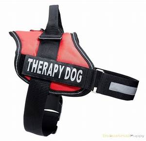 Service Dog Vest Harness with 2 Reflective Velcro Patches ...