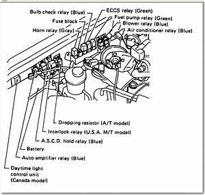 2000 Nissan Pathfinder Radio Replacement Diagram Html
