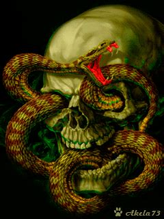 Animated Snake Wallpaper - 3d images of snakes the free snake and skull wallpaper