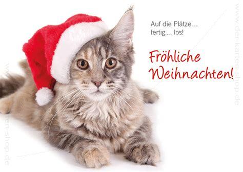 postkarte weihnachtskarte suesse katze auf die plaetze