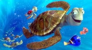 Findet Nemo Kostüm Baby : the east australian current finding nemo animated scenes that come together perfectly ~ Frokenaadalensverden.com Haus und Dekorationen