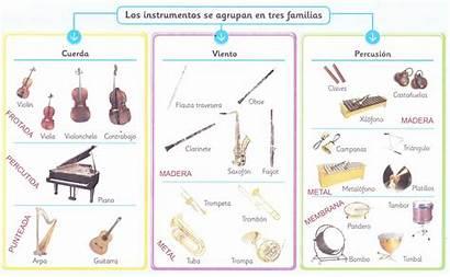 Instruments 4t Primaria Prim Flauta