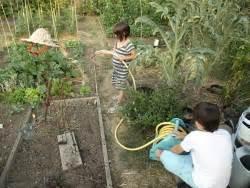 definir  projet de jardinage  lecole