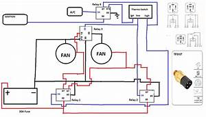 Thermofan Wiring Diagram - Auto Electrics - Ozfalcon