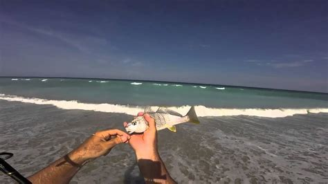 surf fishing florida croakers catch
