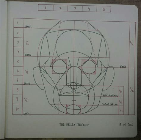 image result  reilly planar analysis   face