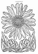 Coloring Spring Sprung Adult Ruth Heller Crazy Printable sketch template