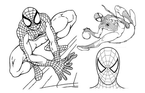 Spiderman Coloring Pages Print Out