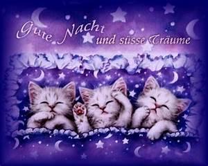 Süße Träume Bilder Kostenlos : gute nacht und s e tr ume whatsapp und facebook gb bilder gb pics jappy g stebuchbilder ~ Bigdaddyawards.com Haus und Dekorationen