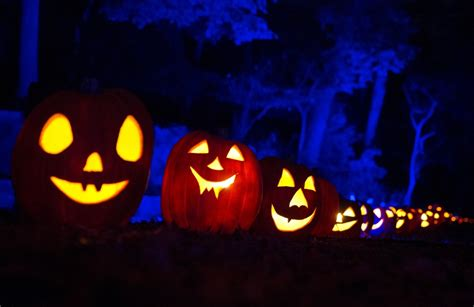 Happy Halloween 2016 Best Quotes, Wishes, Greetings, Messages To Be Shared With Friends And Family