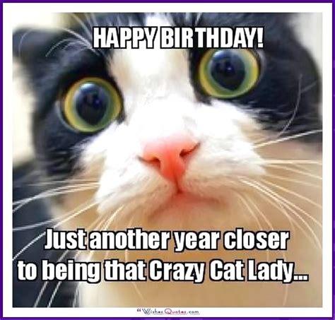Funny Cat Birthday Meme - happy birthday memes with funny cats dogs and cute animals birthday memes happy birthday