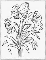 Coloring Flower Pages Realistic Spring Printable Print Detailed Roots Sheets Comments Colouring Designs Getcolorings Rose Visit Getdrawings Drawing Astonishing Coloringhome sketch template