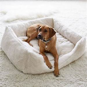faux fur pet bed ivory luxe pbteen With luxe dog bed