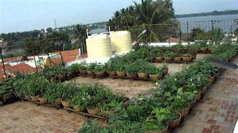 vegetable roof garden sulur panchayat union office