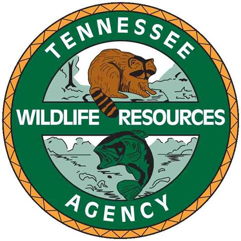 Boating Accident June 2018 by Deadly Boating Accident On Tennessee River Under