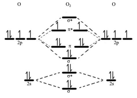 fileomoleculardiagramcrjpg wikipedia