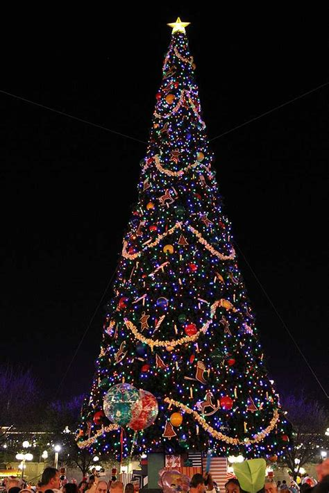 disney world christmas trees holidays decorations and christmas tree at the magic 2957
