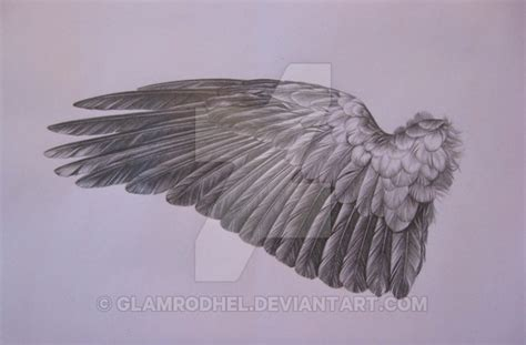 Crow Wing By Glamrodhel On Deviantart