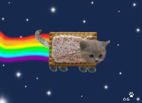 Nyan Cat !!! By Doodlebuglover10  Publish With Glogster