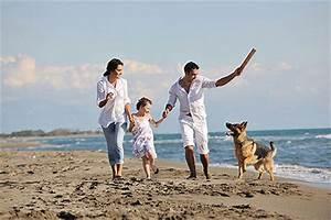 Urlaub Mit Hund Am Meer Italien : urlaub mit hund in italien hunde ~ Kayakingforconservation.com Haus und Dekorationen