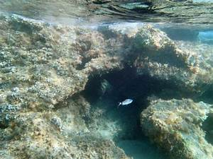 Underwater Rocks - Picture of Halikounas Beach, Corfu Town ...