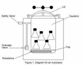 Autoclave Diagram : ibg 102 lab report lab 3 preparation and ~ A.2002-acura-tl-radio.info Haus und Dekorationen