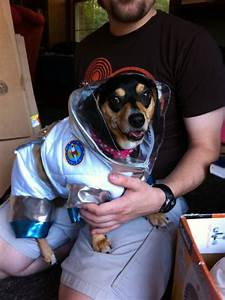 Astronaut Dog Gif - Pics about space
